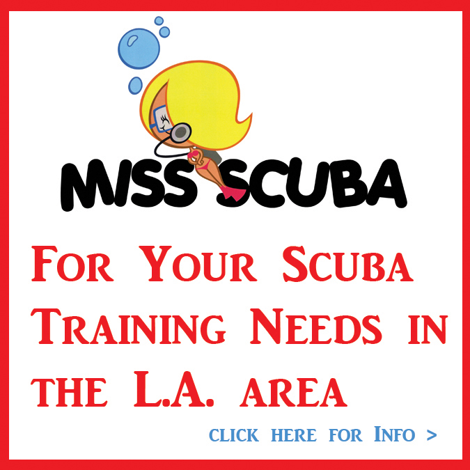 Take Your Scuba Classes with Szilvia Gogh Founder of Miss Scuba!
